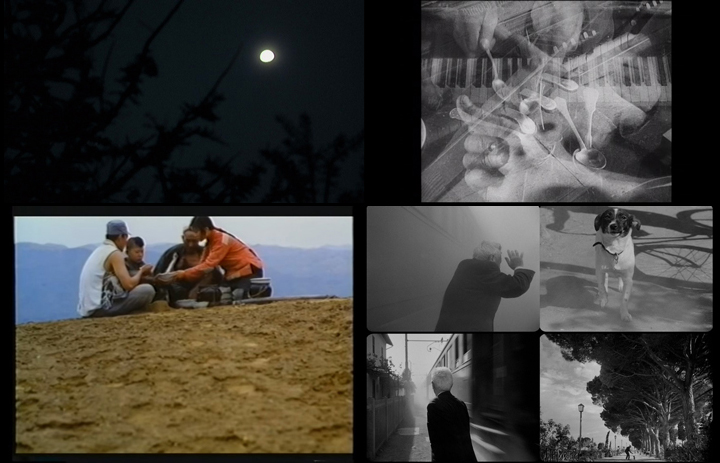Tropical Malady (2004); Man with a Movie Camera (1929); Yellow Earth (1984); Umberto D. (1952)