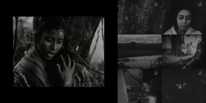 Pather Panchali (1955) and Aparajito (1956)